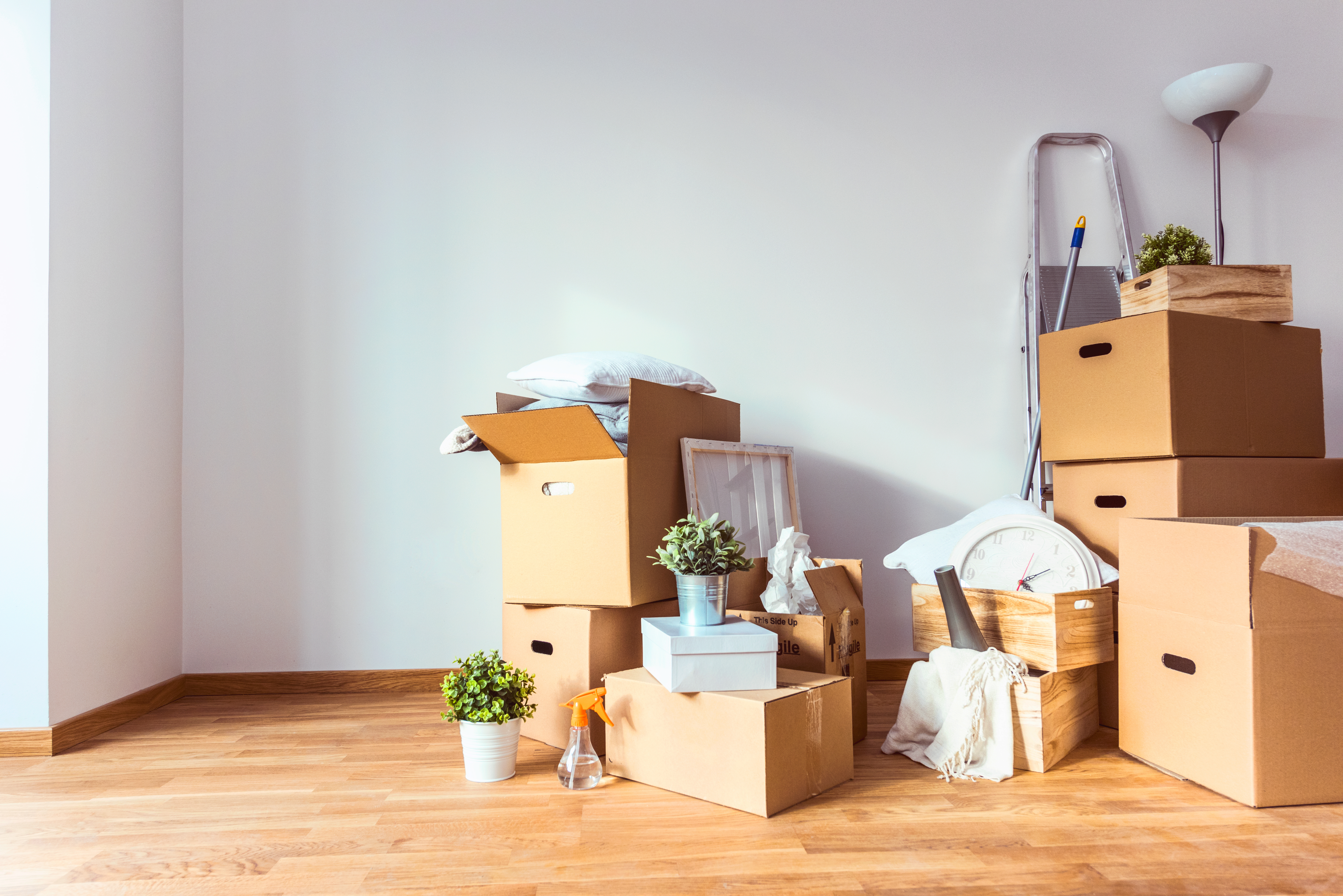 What Issues Need to be Addressed in Move Away Cases